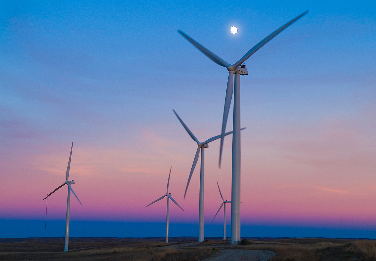 Sustainable Investing: 5 Tips to Get Started